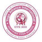 yai-300-logo