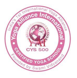 yai-500-logo